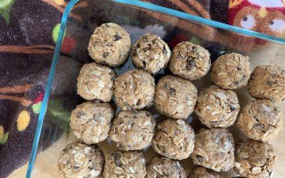 Peanut Butter Oat Breakfast Bites